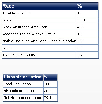 2011 colorado race diversity