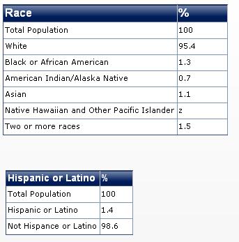 2011 maine race diversity