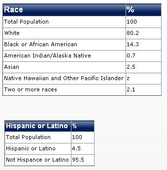 2011 michigan race diversity