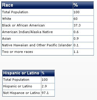 2011 mississippi race diversity