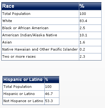 2011 newmexico race diversity