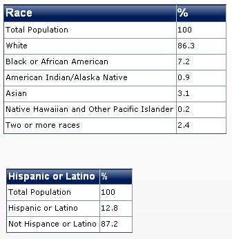 2011 rhodeisland race diversity
