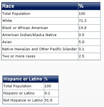 2011 virginia race diversity