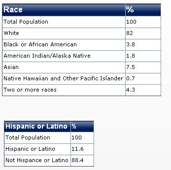 2011 washington race diversity