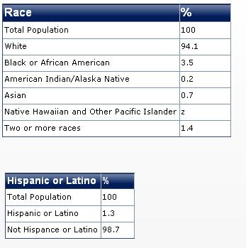 2011 westvirginia race diversity